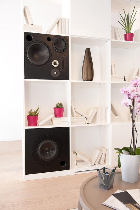 Epilog R V Built in speaker without cove
