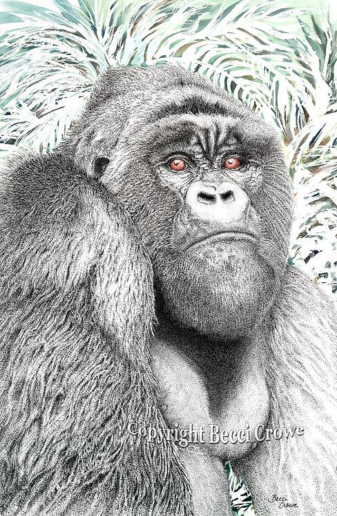 "Mountain Gorilla ""Silverback"""