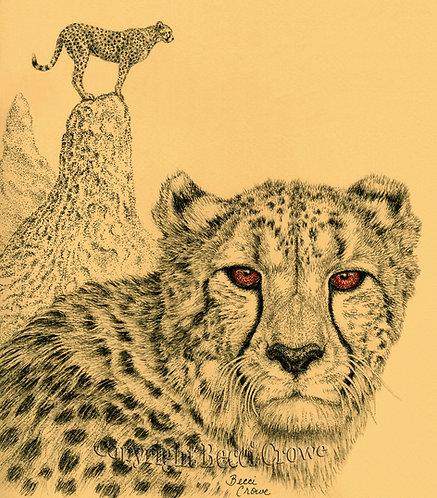 "Cheetah ""Wild & Free"""