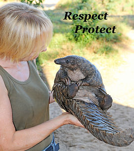 Becci Crowe with rescued Pangolin