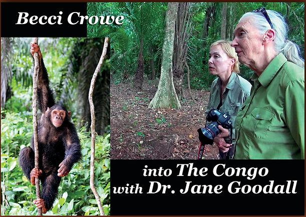 Becci Crowe Jane Goodall