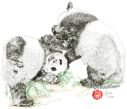 """Panda Play Time"""