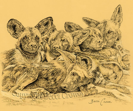 "African Painted Dogs ""Sleep Heap"""