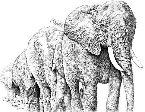 """""""Elephants of Kilimanjaro"""""""