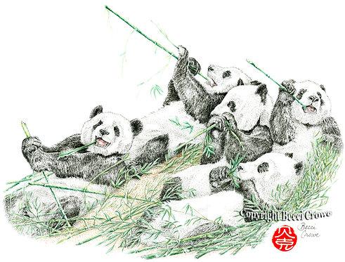 """Bamboo Heaven"""