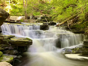 Ricketts-Glen 2.jpg