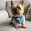 Thumbnail: Manx Tartan Personalised Over The Collar Dog Bandana