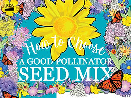 pollinator seed cover.jpg