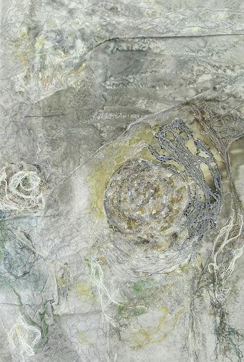 Deirdre Stephens Sea Snail.JPG