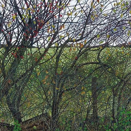 3. 'The Wren's Map', Catherine Patrickso