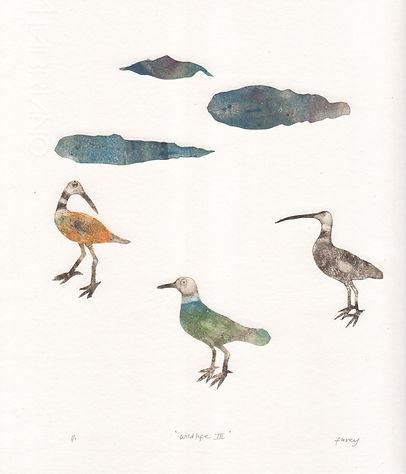 Kathleen Furey Wildlife 3 300DPI.jpeg