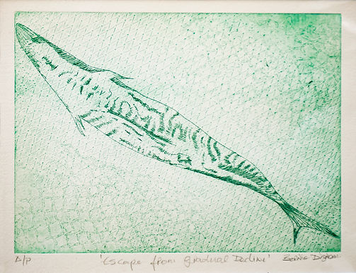 Escaped From Gradual Decline, drypoint,