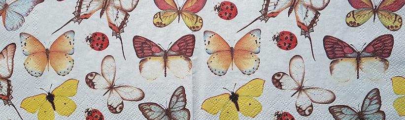 vlinderservet voor website bijgesneden.j