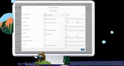 salesforce platform.png
