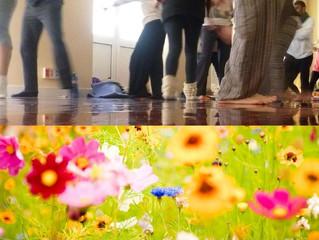 """Taller mensual en la sede en abril: """"Movimiento y Transformación"""" (cambio de fecha)"""