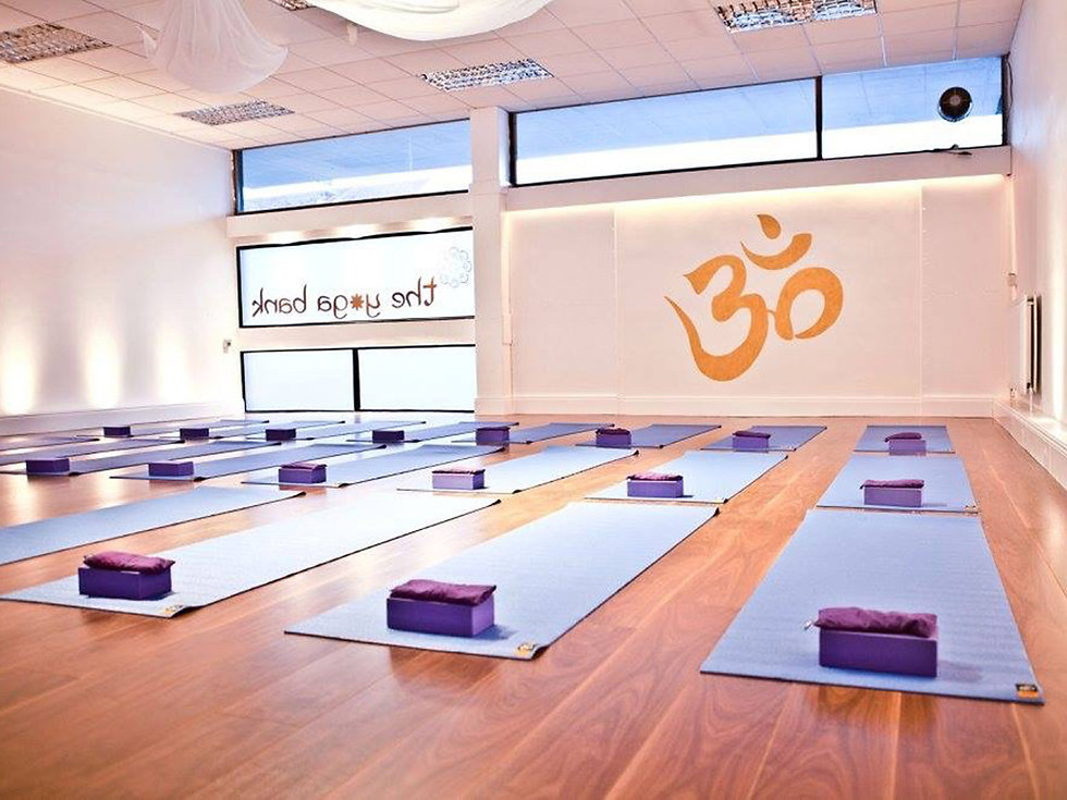 Empty yoga studio with mats and blocks set out for class