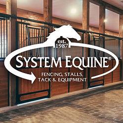 system equine.jpg