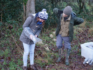 Mammal Surveying and Beaver Site at Woodland Valley Farm