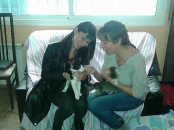El pequeño Tom ha sido adoptado