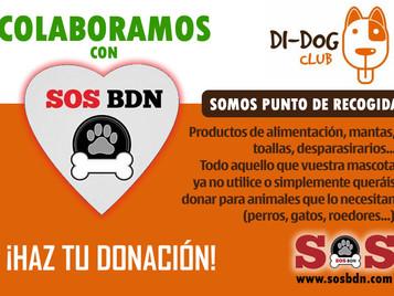 Di-dog Club, tienda de animales y colaboradores