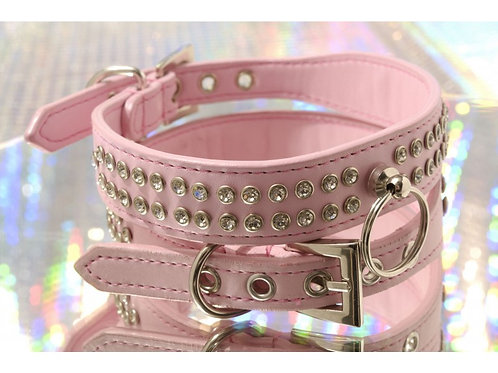 Crown Jewels Dog Collar