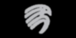 Icon-Aigle.png