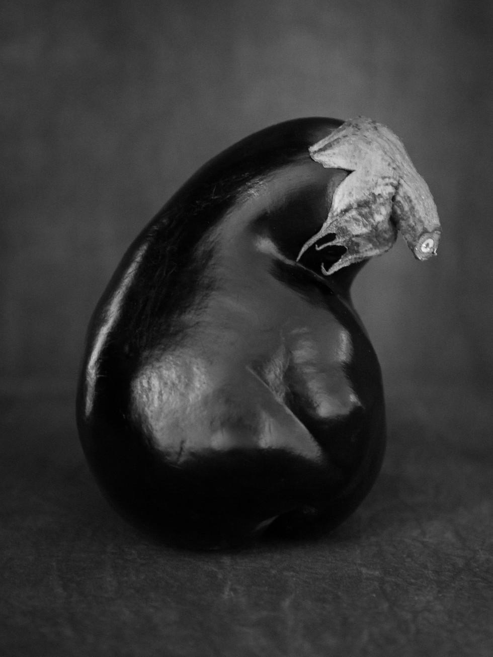 Aubergine in zwart-wit