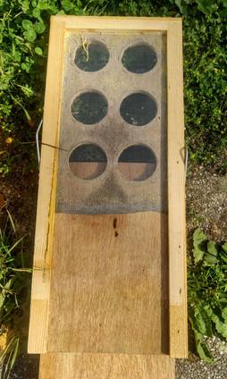 Le fond de ruche