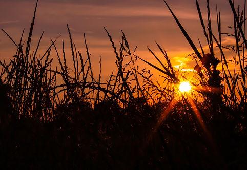Sunset.34.jpg