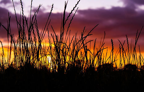 sunset.25.jpg
