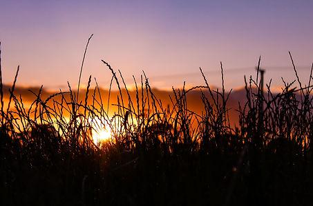sunset.24.jpg