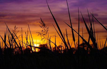 Sunset.12.jpg