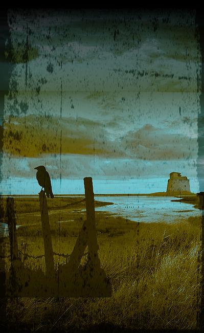 Boyd5-backdrop.jpg