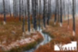 Secret_Forest.jpg