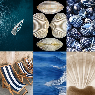 Mood Estampa Mediterrâneo Salgar Moda Praia