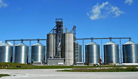 Sistema ERP SAP Alimentos Animales y Bebidas