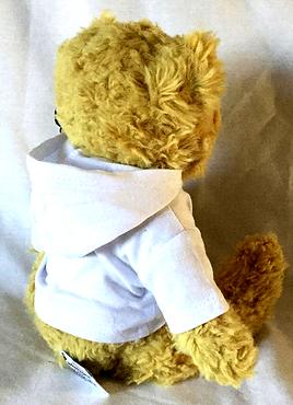 A1 Dance Hoodie Teddy - Hood down