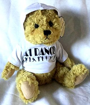 A1 Dance Hoodie Teddy - Hood up