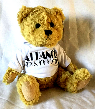 A1 Dance Hoodie Teddy - Front