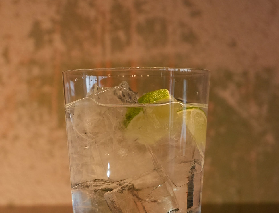 Wildstueck Gin + Fevertree tonic
