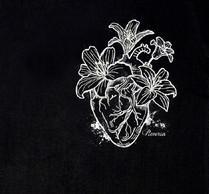 REVERSA - Coração2.jpg