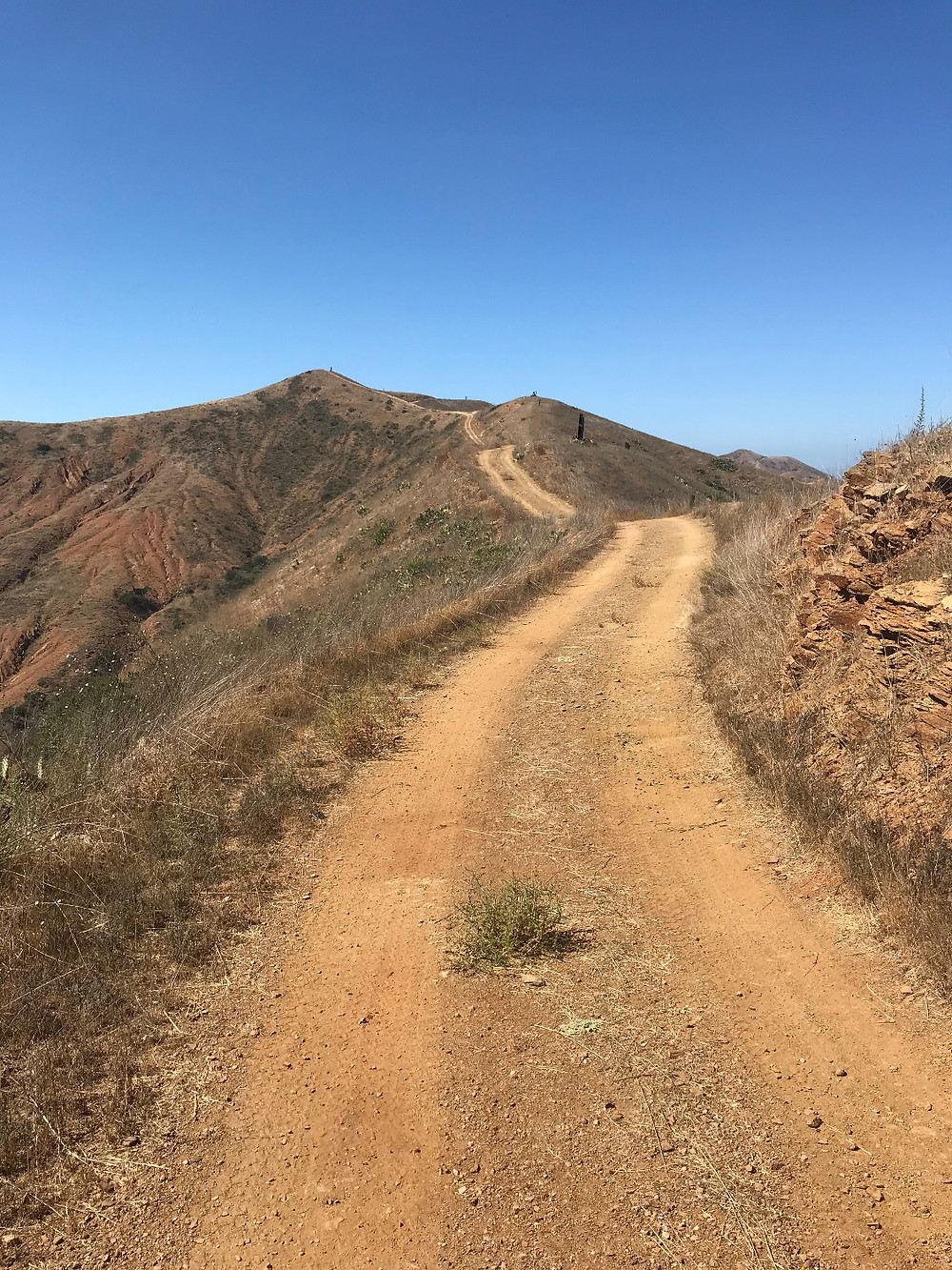 Trans Catalina Trail to Parsons Landing