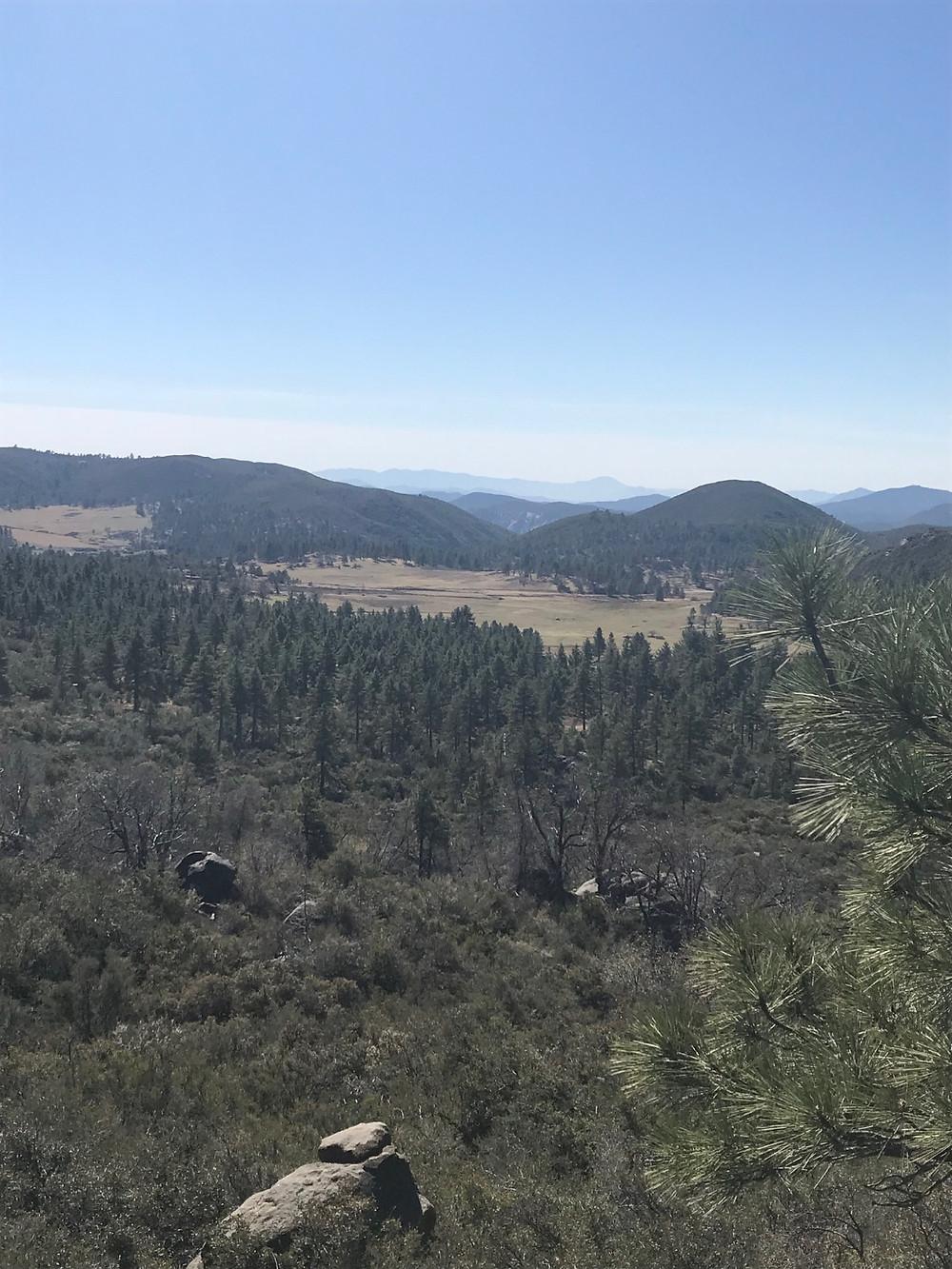 Mt Laguna Sunset Trail Mountain Meadows