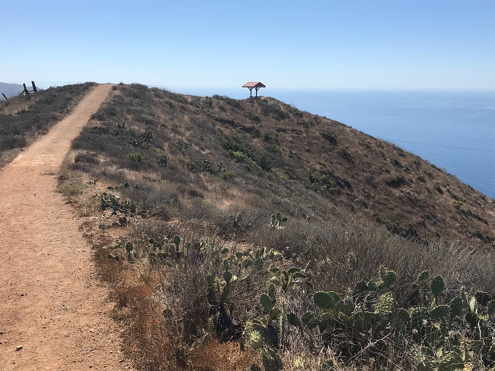 Trans Catalina Trail Lookout Point