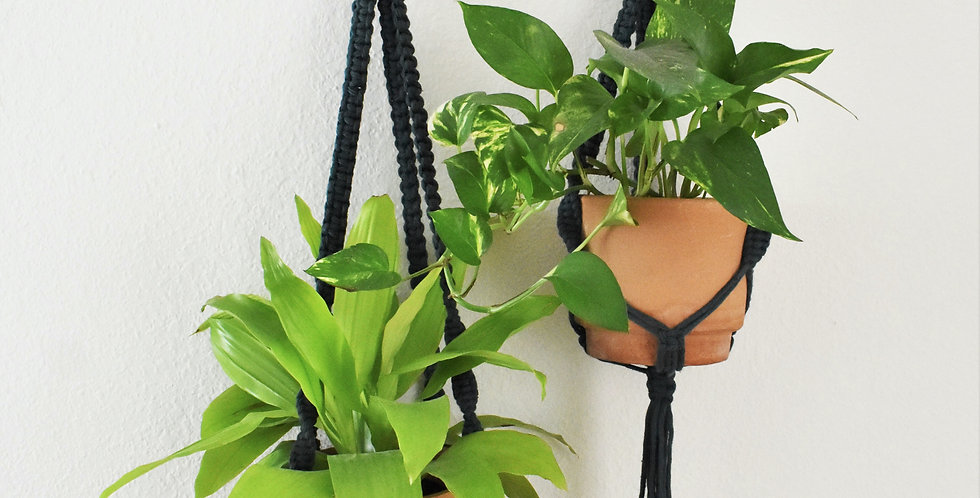 Classic Plant Hammock | Short