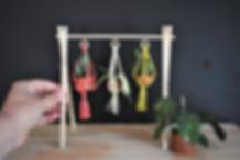 Plant Hanger Set 2.JPG