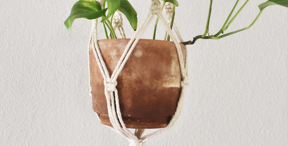 Classic Plant Hammock | Double