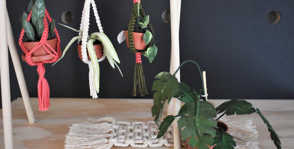 Set of 3 | Miniature Plant Hammocks