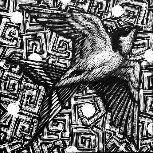 Bird Scratch Portfolio