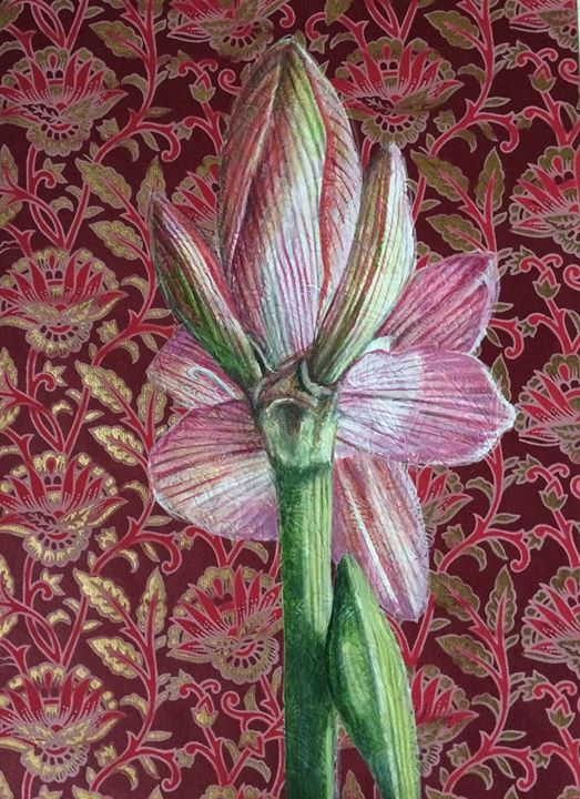 Wrestling with an amaryllis again